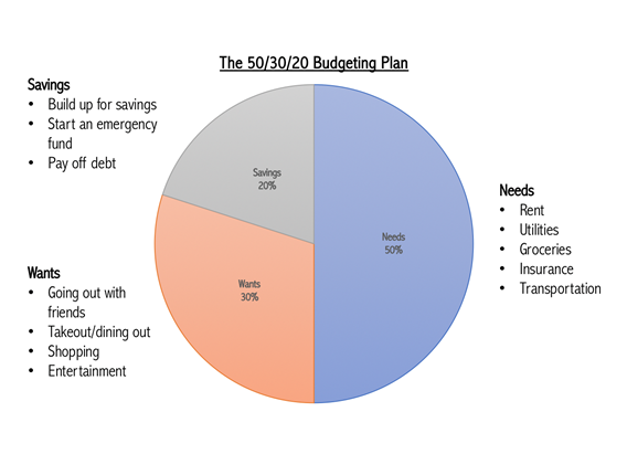 A pie chart displays a breakdown of the 50/30/20 budget.